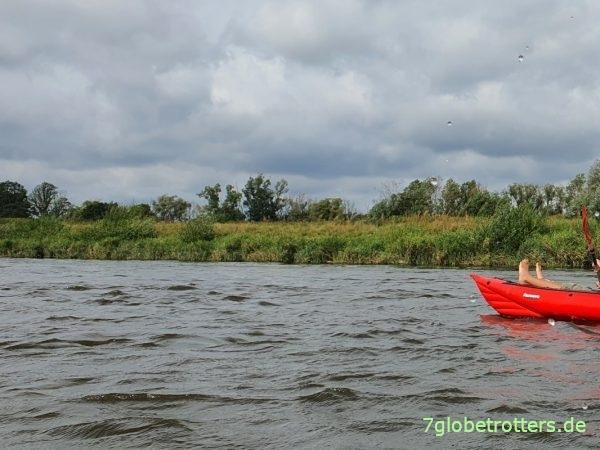 Paddeln durchs Biosphärenreservat Mittelelbe nach Dessau