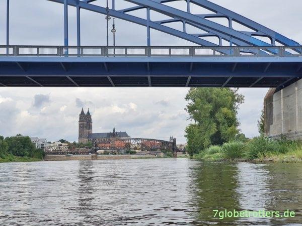 Domfelsen Magdeburg: Paddeln auf der wilden Elbe