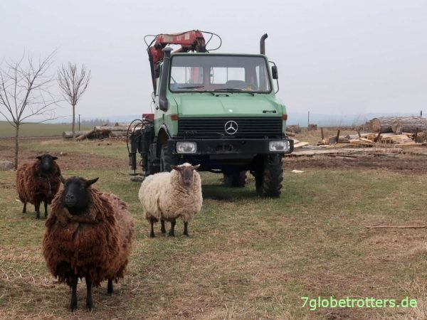Unimog U1300 L mit Ladekran