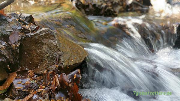 """Das Wasser neben dem """"Radweg"""""""