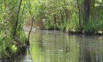ᐅ Tag 4 der 10-Seen-Rundtour: Gobenowsee - Krenzsee - Balinkasee