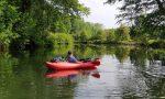 ᐅ Wasserwandern nach Cottbus: Spreedschungel statt Spreewald